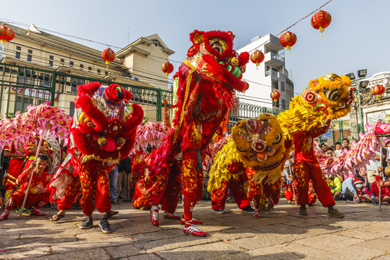 Chinese Lion Dances